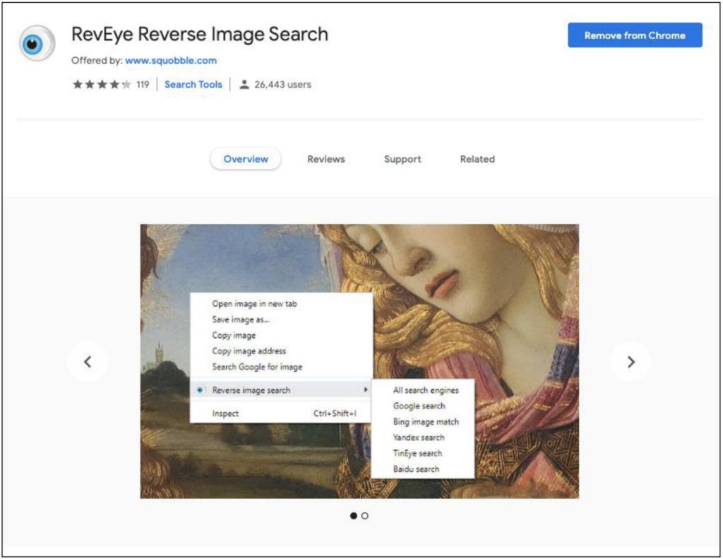 Screenshot of Reveye reverse search page